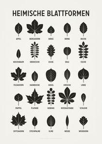 Heimische Blattformen von Iris Luckhaus