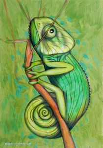 green chameleon by federico cortese