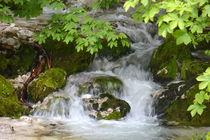 kalt - erfrischend - nass von gugigei