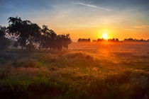 Sunset summer landscape. by Maxim Khytra