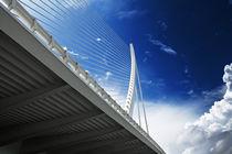 Calatravamania von Maxim Khytra