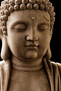 Buddha von nikx