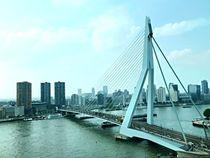 Erasmusbrücke in Rotterdam von Martina Lender-Frase