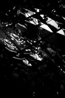 Full House by Bastian  Kienitz