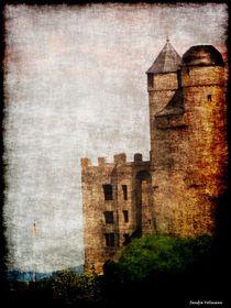 Burg Greifenstein  von Sandra  Vollmann