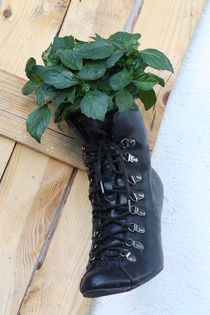 Stiefel von Bernd Eglinski