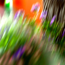 Flowers in motion by Martina Marten