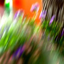 Flowers-in-motion