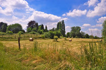 Sommerzeit by AD DESIGN Photo + PhotoArt
