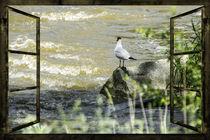 Fensterblick - Wilde Wasser  von Chris Berger