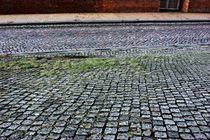 Pflastersteinvielfalt - cobblestone by Martina Lender-Frase