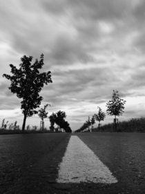 road von concreteberlin