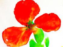 Red flower von Maria-Anna  Ziehr