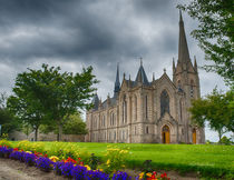 Cathedral Flowers by Ed The Frog