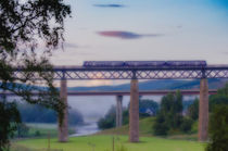 Misty Train To Inverness by Ed The Frog