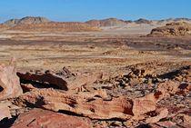 Sinai165