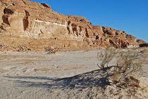 Sinai167