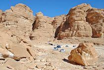 Sinai171