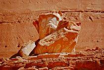 Sinai176