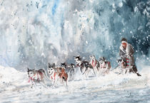 Huskies Race In Germany by Miki de Goodaboom