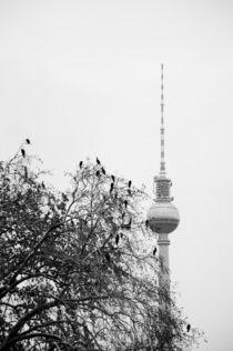berlin, alexanderplatz von whiterabbitphotographers