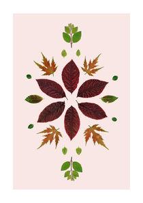 Leaves of June 4 by Wibke Murke