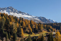 Herbst in Graubünden von Felix Gross