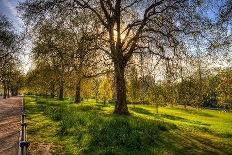 St-james-park-london