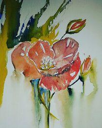 Blumen by Minka Husidic