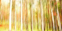 Wischerwald von gugigei
