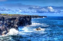 Coastline, Big Island, Hawaii by Frederik Soepenberg