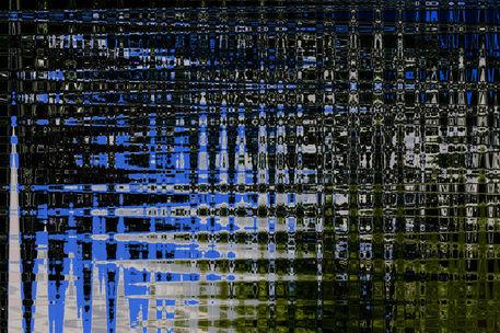 Blue-forrest