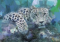 Leopard  by Galen Valle