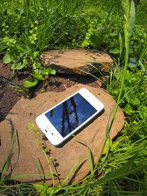 White smartphone on a rock in a meadow by Vladislav Romensky