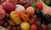 Bountiful Basket of Heirloom Tomatoes by Michael Moriarty