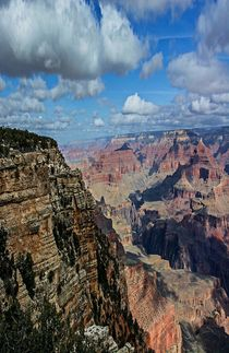 Grand Canyon National Park von Michael Moriarty