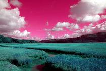 'post-apocalyptic landscape' von Harvey Hudson