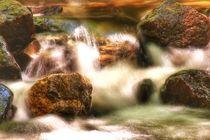Falling Water von Susanne  Mauz
