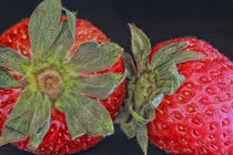 Erdbeerzeit by Gisela Peter