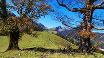 Herbst in den Bergen,  von Regina Müller