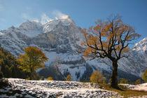 Die Eng und großer Ahornboden - Herbst und Wintereinbruch von Regina Müller