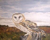 Barn Owl by Bonnie Boerger