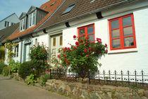 Rosen am Haus von Sabine Radtke