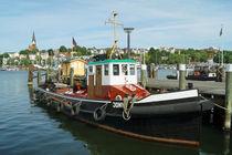 Jonny im Flensburger Hafen von Sabine Radtke