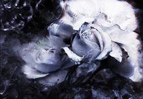 Licht ins Dunkle by Ursula Kliment