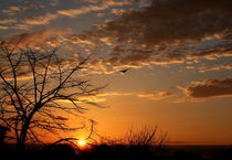 Sunset by haike-hikes