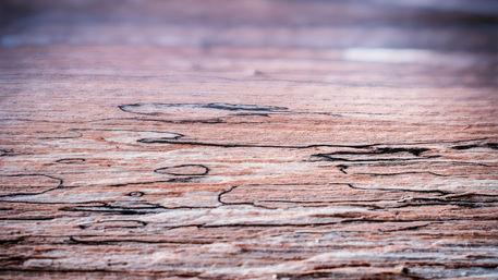 I-wood