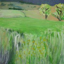 Westerwald Landschaft -Felder- von Sue San