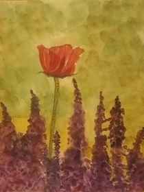 Mohnblume und Lupinen by Rena Rady