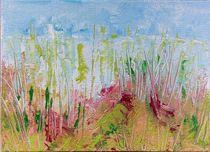 Dünenlandschaft von Sue San